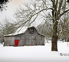 Red door in snow by Jimmy Phillips