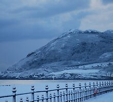 Snow on Bray Head Co.Wicklow by Aoife McNulty