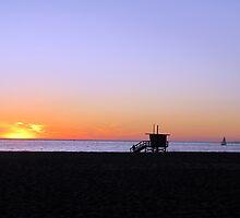 Venice Beach Sunset by David Shaw