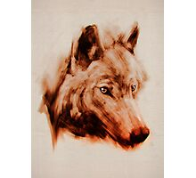 The Wolves  Photographic Print