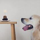 Happy Birthday Doggy by Catherine Holmes