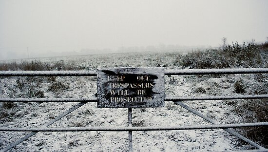 The sign in the snow. by Ruth Jones