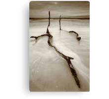 life, even after death... Canvas Print