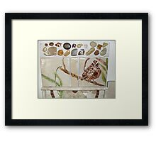 sparrow on a branch, on tile Framed Print