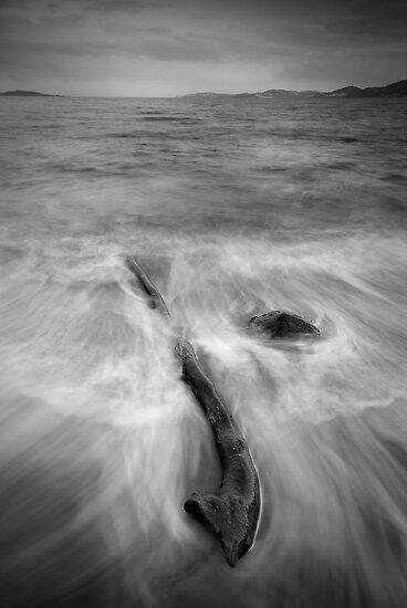 Debris - Taroona, Tasmania by Liam Byrne
