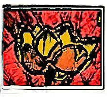 Yahm Lotus- Batik  Fire Ultrasound Photographic Print