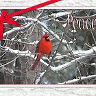 Christmas Cardinal by CarolD