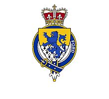 Coat of arms (family crest) for last-name or surname Ford (England) . Heraldry banner for your name. Photographic Print
