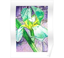 Iris I Poster