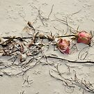 Washed Up Roses by Jeff Ore