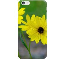 Beautiful Daisies iPhone Case/Skin