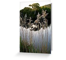 introspection Greeting Card