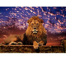 The Great One Photographic Print