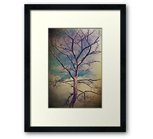 It Can't Be Wrong Framed Print