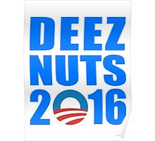 DEEZ NUTS FOR PRESIDENT Poster