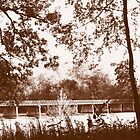 River Bridge by Bobbie J. Bonebrake