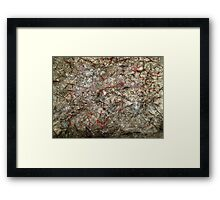 Polluted Graffiti  Framed Print