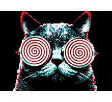 scary cat Photographic Print