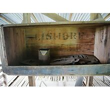 In the shearing shed Photographic Print