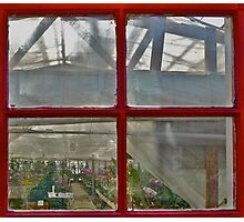 Hot House Window Photographic Print