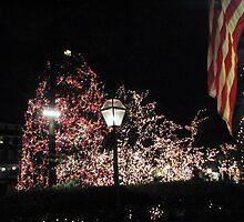 Christmas Tree / Nassau  St. by Rick  Todaro