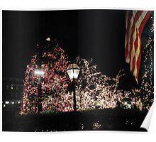Christmas Tree / Nassau  St. Poster