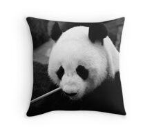 Wang Wang the panda, close up Throw Pillow
