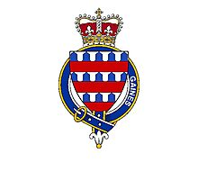 Coat of arms (family crest) for last-name or surname Gaines or Gaynes (England) . Heraldry banner for your name. Photographic Print