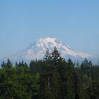 Mt. Rainier by Kathleen Hamilton