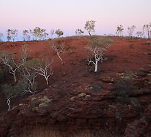 Colors of the Pilbara by Karry Smith