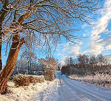 Winter in Scotland by Malgorzata Larys