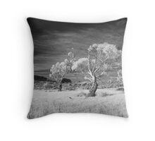 Fingal Valley Throw Pillow
