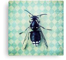 The hornet Metal Print