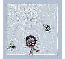 Winter Spider Photographic Print