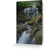 Below the Cascades. Greeting Card
