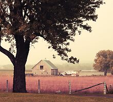 Countrylife by Aimelle