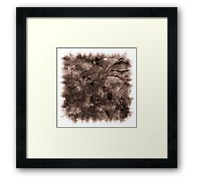 The Atlas of Dreams - Plate 10 Framed Print