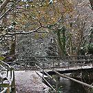 Washford  Footbridge. by relayer51