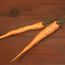 Carrots by Birgit Schnapp