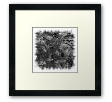 The Atlas of Dreams - Plate 10 (b&w) Framed Print