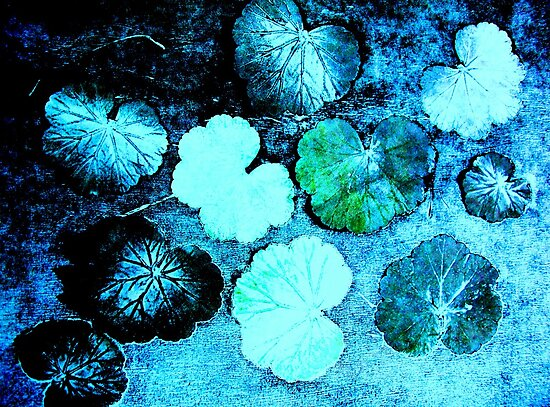 "December's Garden 1 by Belinda ""BillyLee"" NYE (Printmaker)"