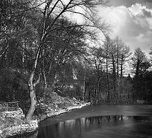 Lake by Stefan Kutsarov