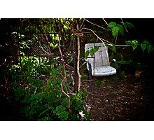 Secret Garden II Photographic Print
