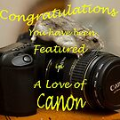 A love of Canon Banner by Ray Clarke
