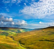 Summer View from The Buttertubs by Trevor Kersley