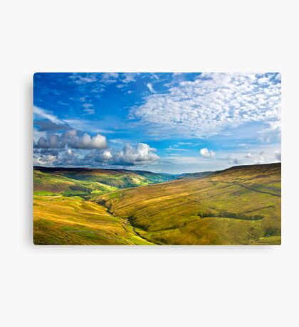 Summer View from The Buttertubs Metal Print