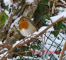 Merry Christmas 2 by lynn carter