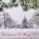 Greeting&#x27;s Card ~ Merry Christmas &amp; A Happy New Year ~ by Sandra Cockayne