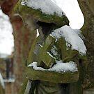 Stone Angel by John Gaffen
