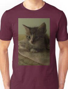 Kitty Portrait Unisex T-Shirt